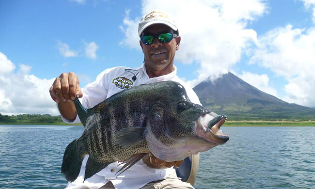 Fishing lake arenal costa rica vacation package for Costa rica fishing season