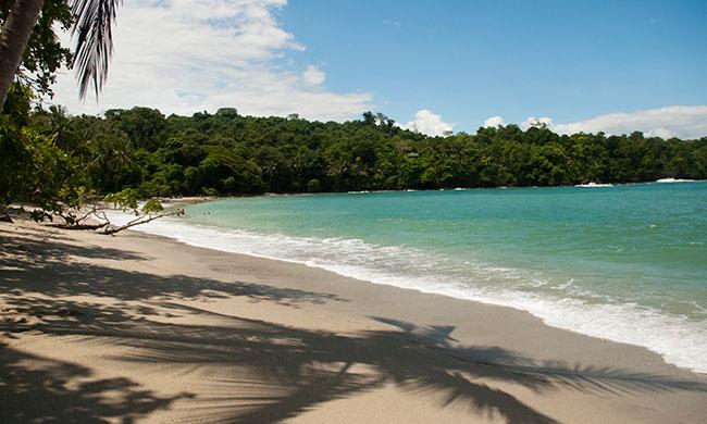 manuel-antonio-national-park-tour-main-beach.jpg